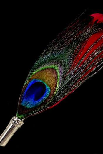 Natural Peacock Feather Pin Brooch Peacock Brooch Wedding Prom Pin for Men and Women